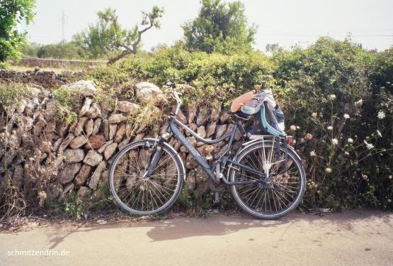 Das Fahrradfahren