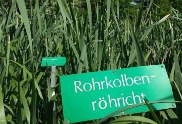 KW 19 // Die Woche in Bonn – ein kompliziertes Wort