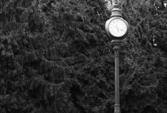 KW 23 // Die Woche in Bonn – Uhren befreien uns