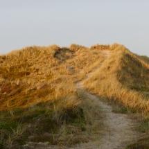 Weg über die Dünen am Abend