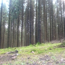 Spaziergang zum Aussichtspunkt Biggesee