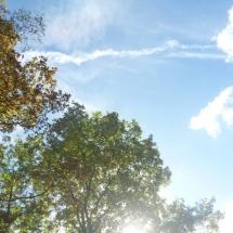 Spaziergang zum Biggeblick, Sauerland