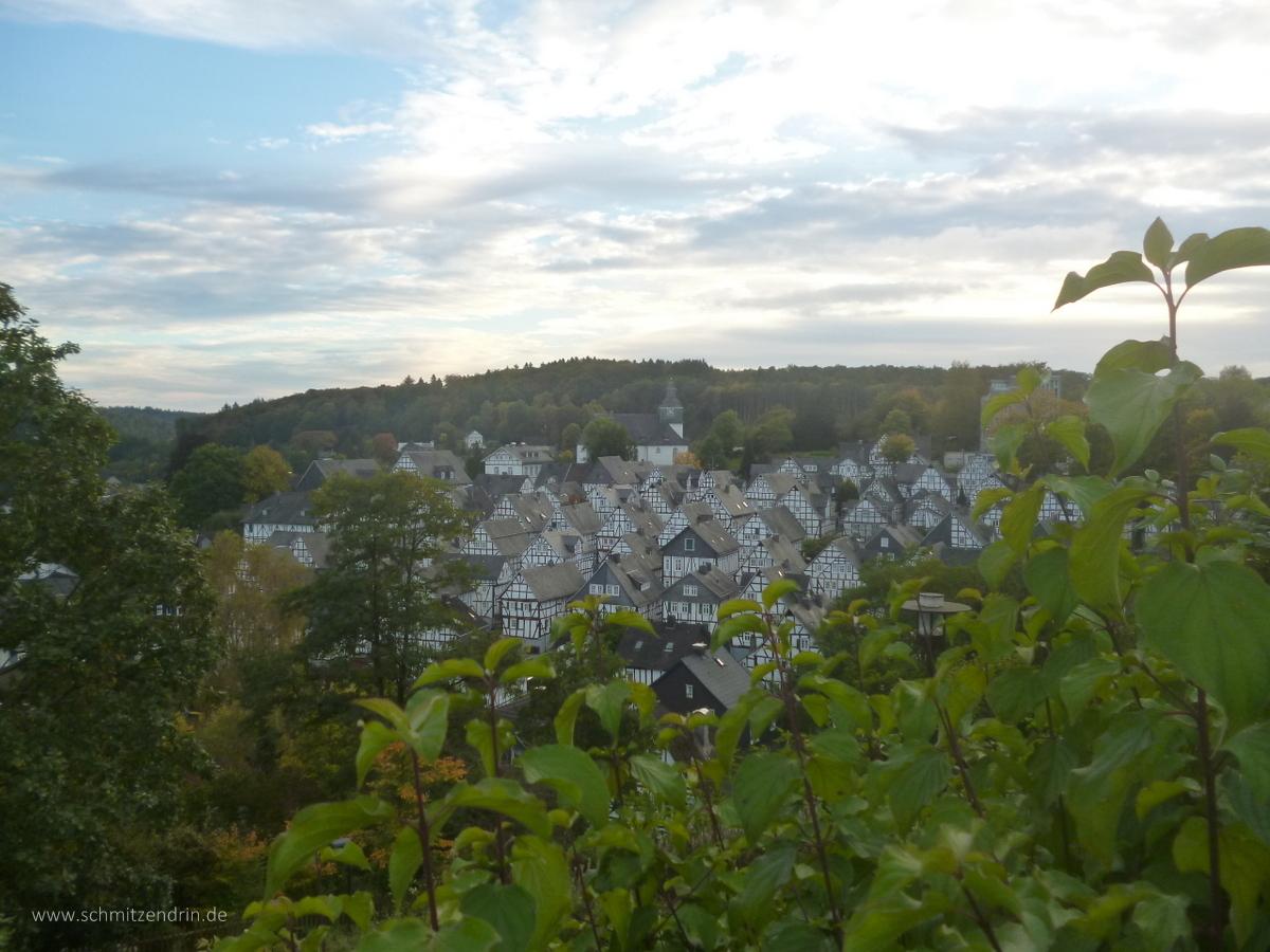 Blick auf die Freudenberger Altstadt
