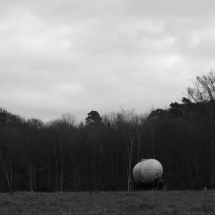 Dezember-Spaziergang in schwarz/weiß